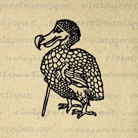 Printable Digital Dodo Bird Alice in Wonderland Graphic.