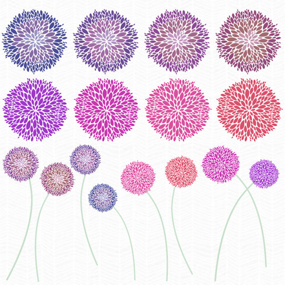 Allium Flower Clip Art.