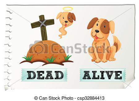 Vector Clip Art of Opposite adjective with dead and alive.
