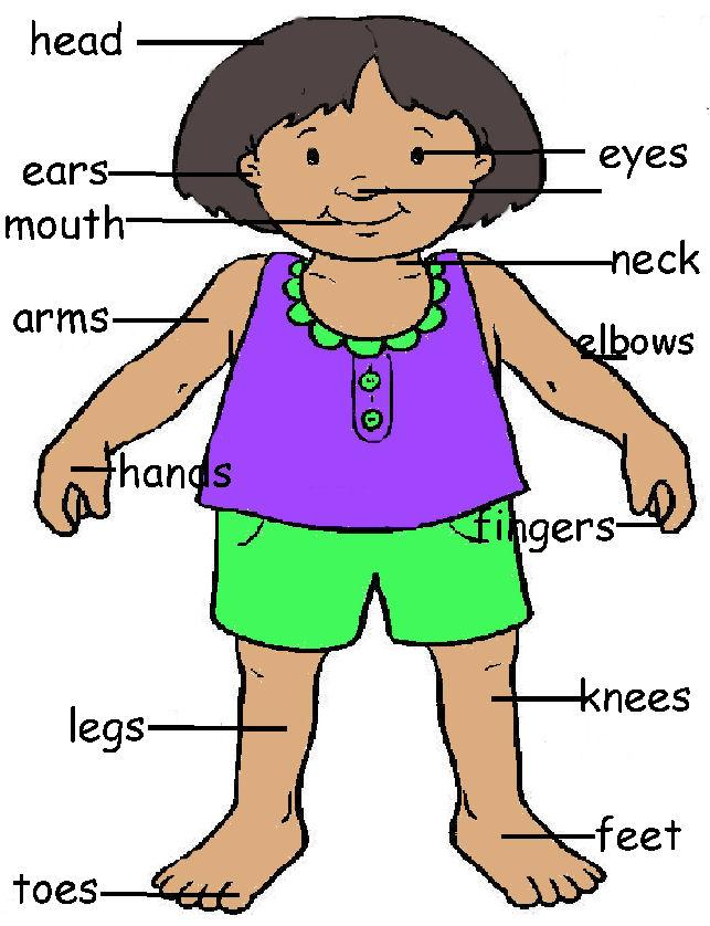Free My Body Cliparts, Download Free Clip Art, Free Clip Art.