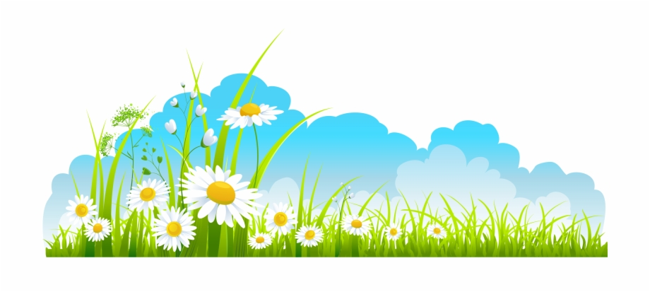 Image Stock Sky And Grass Background Clipart.