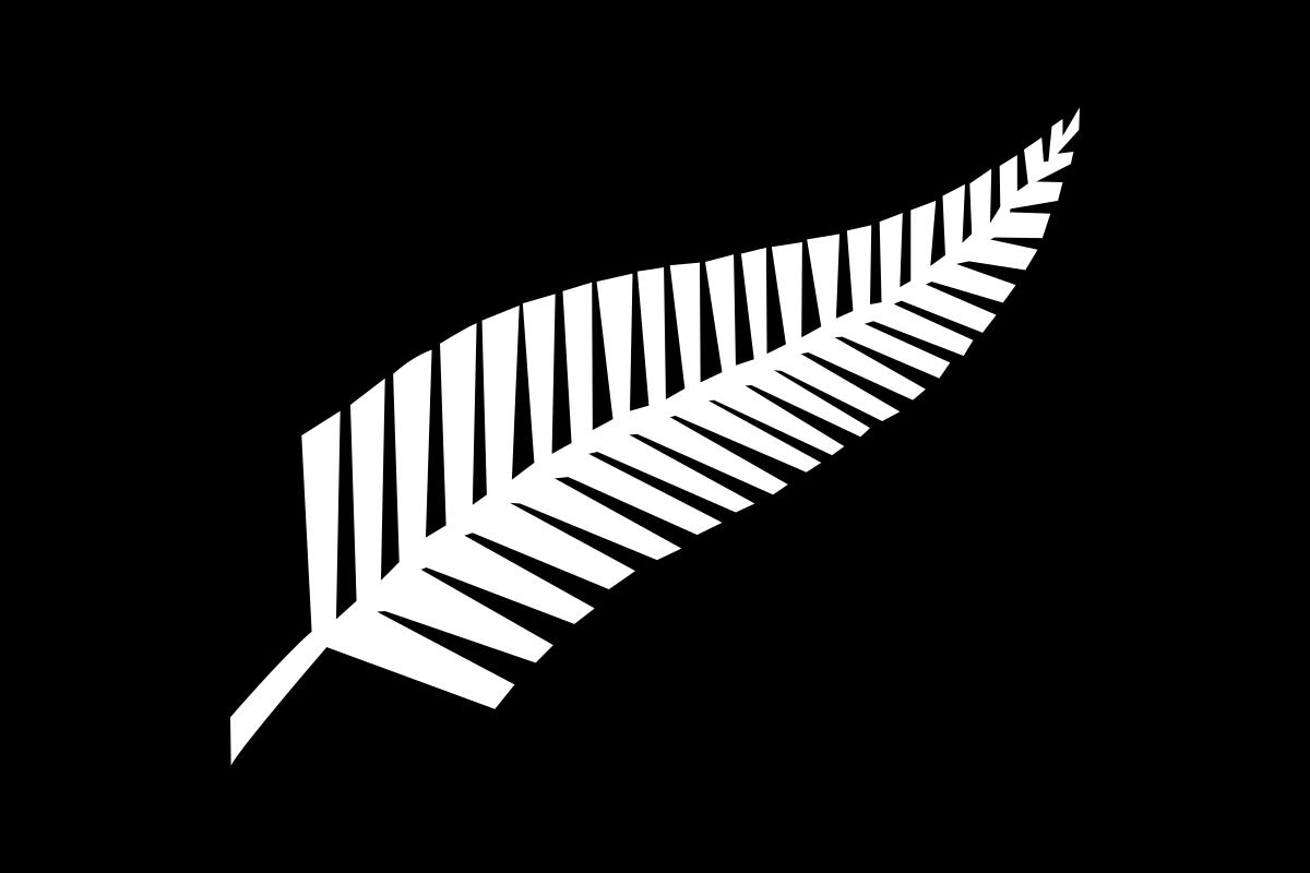 Silver fern flag.