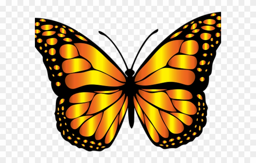 Monarch Butterfly Clipart Png Full Hd.