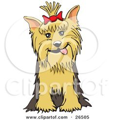 all cute yorkie silhouette with eyes clipart #14