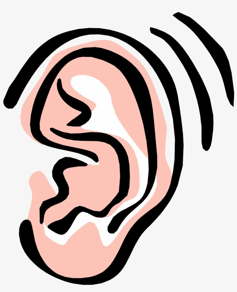Ear Png Image.