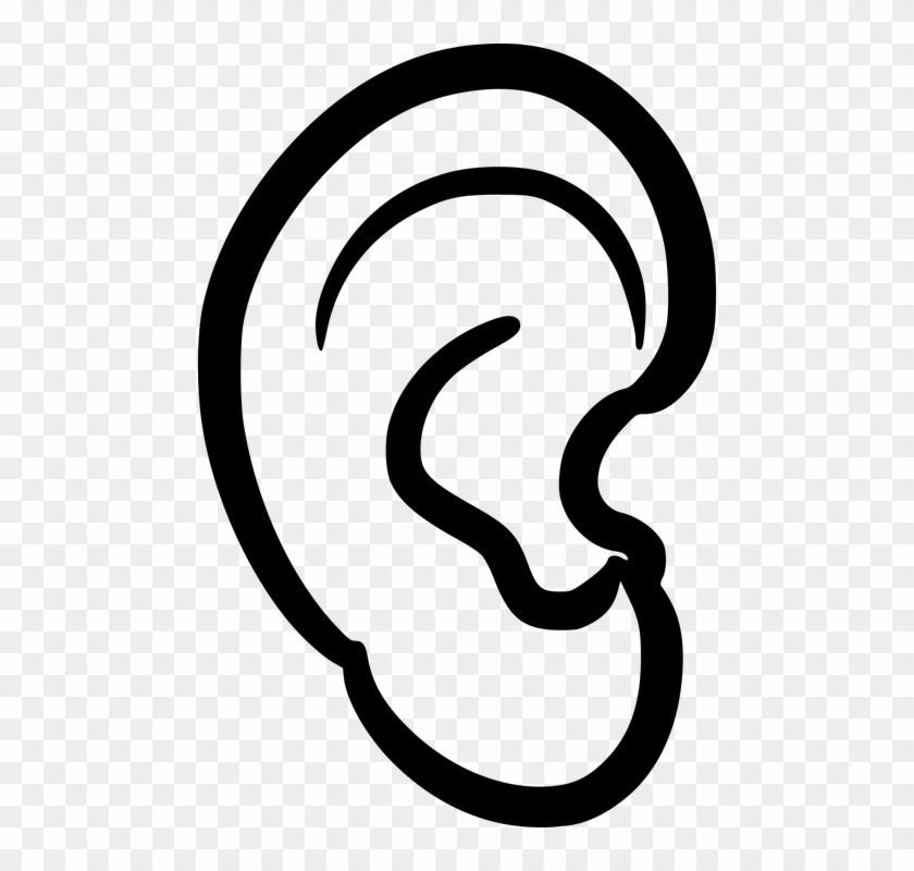 Ears clipart png 4 » Clipart Portal.