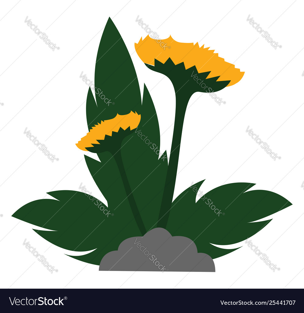 Clipart yellow flowers with leaves grown above.