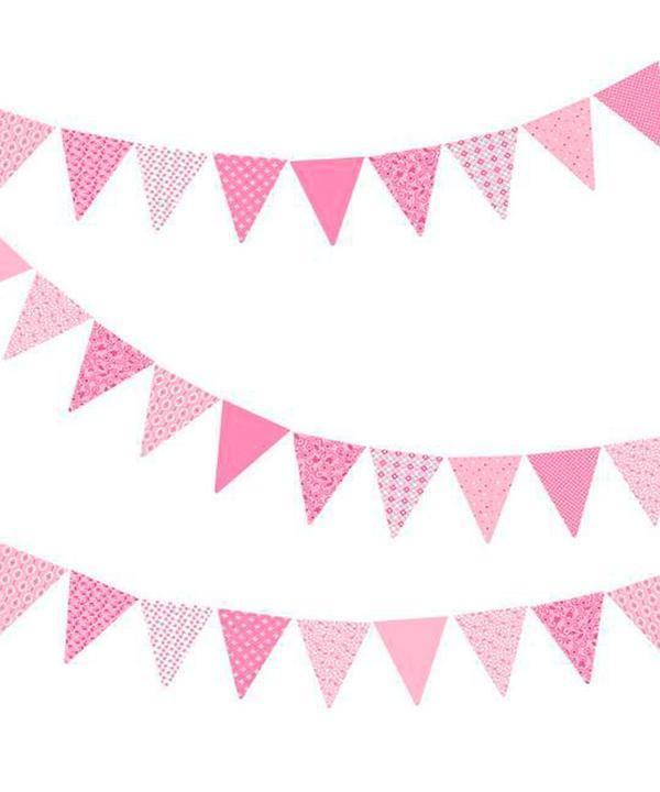 Pink Bunting (PB10).