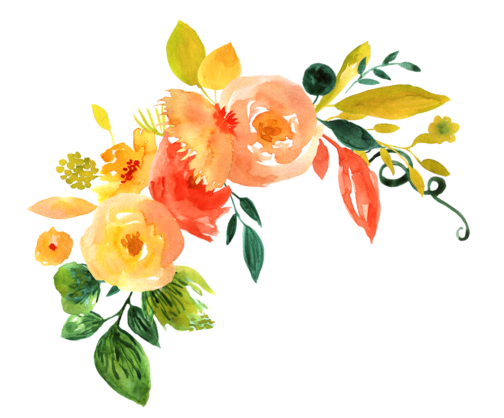 Watercolor Flowers PNG Images Transparent Free Download.