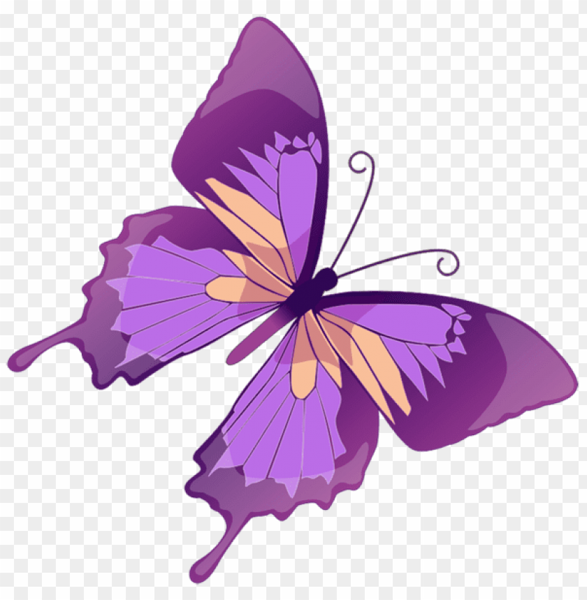 Download transparent purple butterfly clipart png photo.