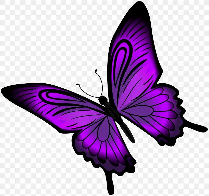 Purple Butterfly Clip Art, PNG, 8000x7512px, Butterfly.