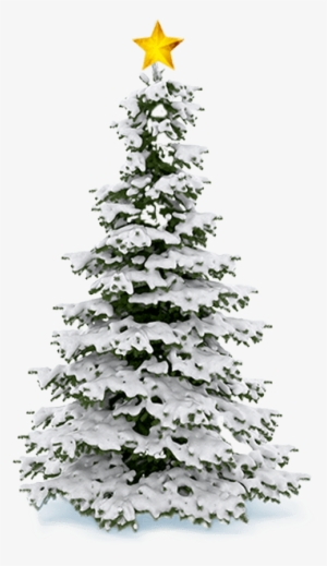 Snow Tree PNG, Transparent Snow Tree PNG Image Free Download.
