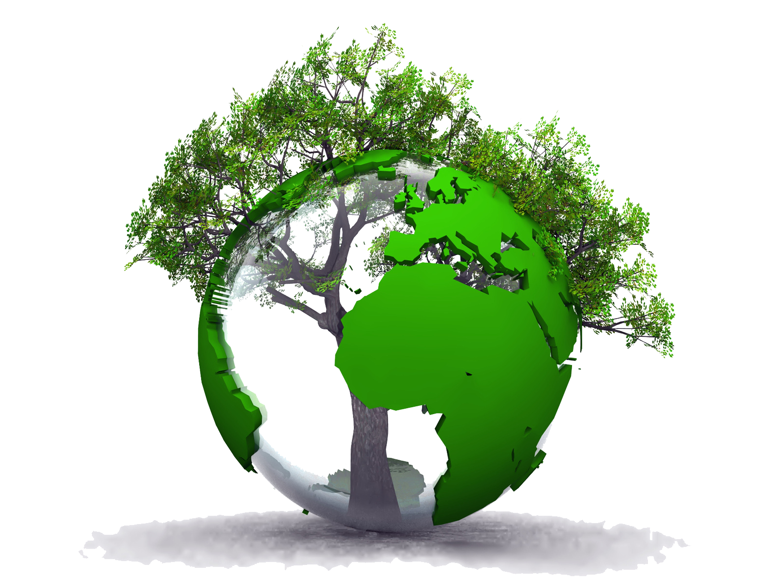 Save Tree Png & Free Save Tree.png Transparent Images #1269.