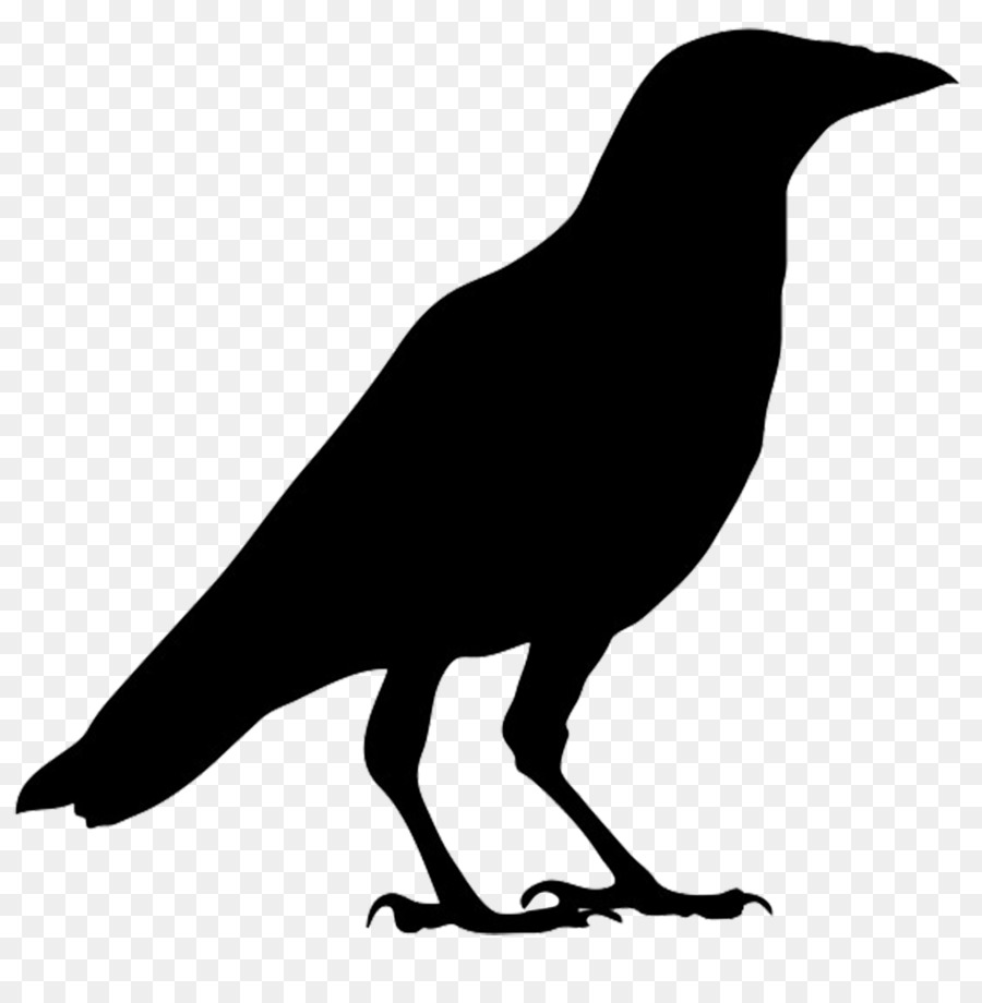 American crow Silhouette Bird Clip art.