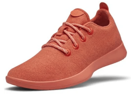 Allbirds Review 2019: Are These Wool Shoes All That?.