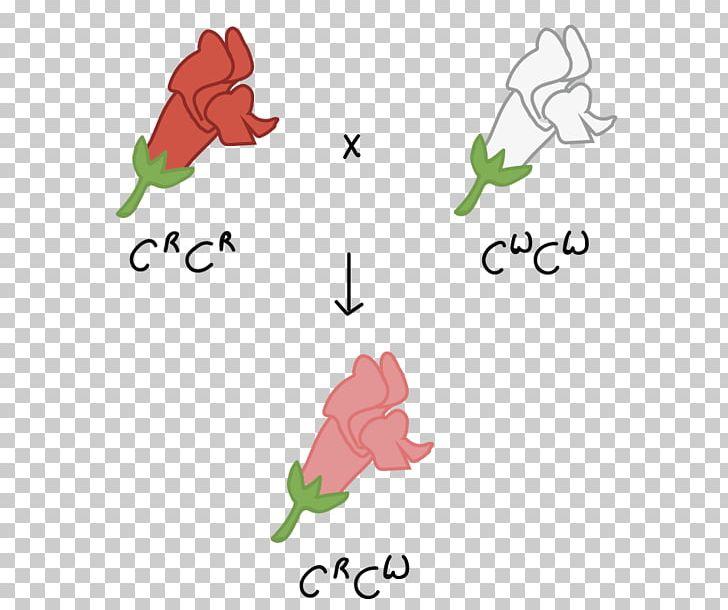 Codominance Allele Genetics Punnett Square PNG, Clipart, Art.