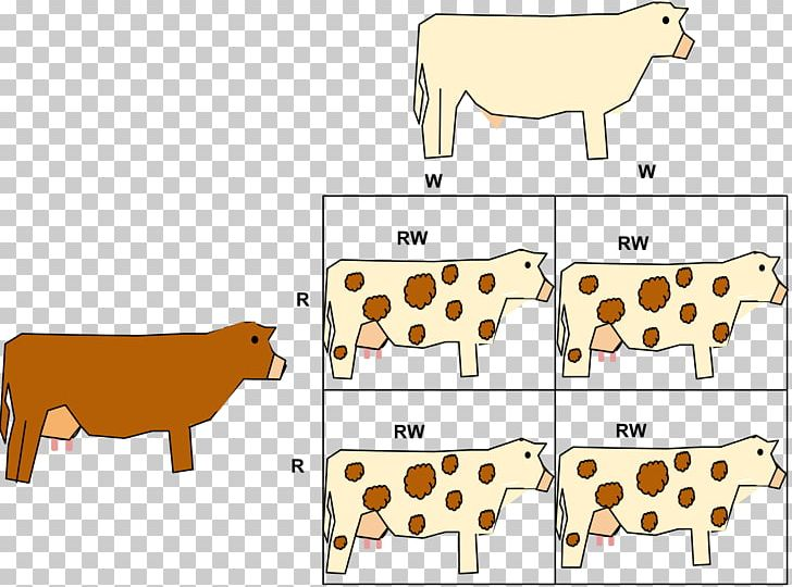 Codominance Allele Phenotype Gene PNG, Clipart, Animal.
