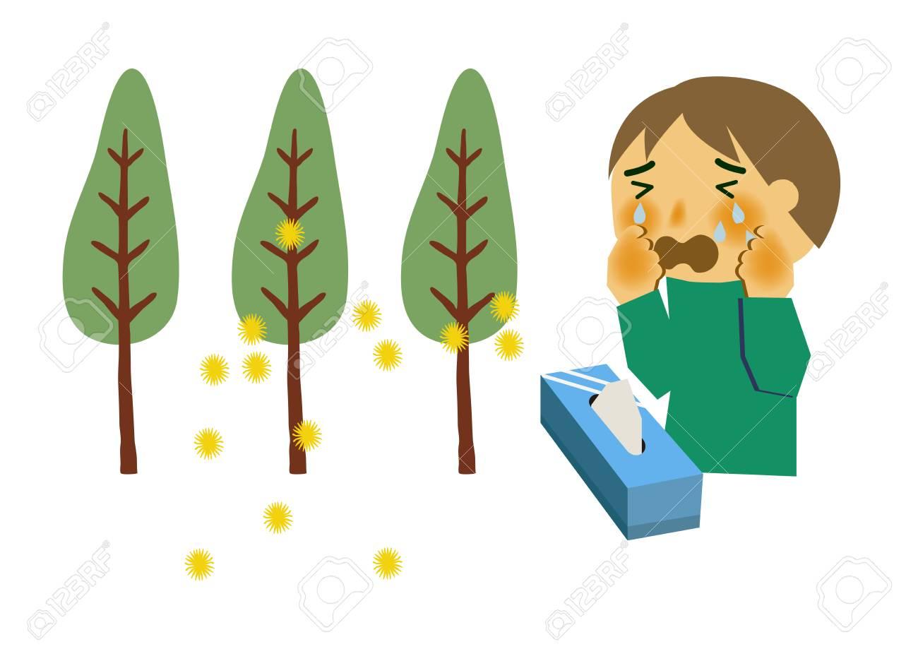 Image of hay fever. People who sneeze. Cryptomeria pollen allergy...