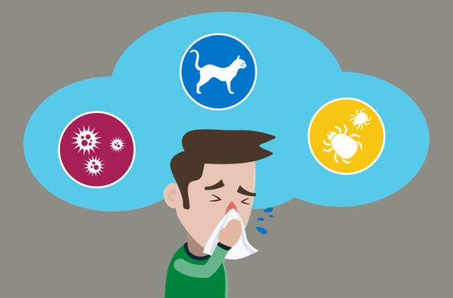 3 Reasons Why Your Indoor Allergies Are Worse in the Winter.