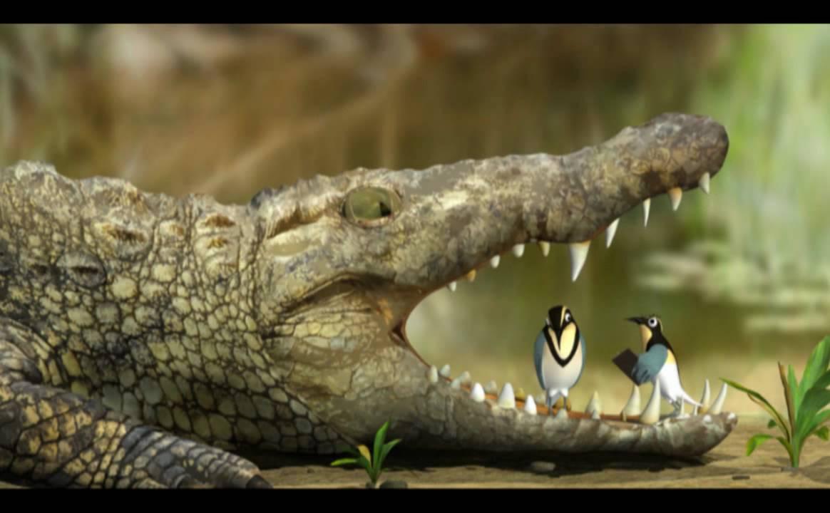 Nile Crocodile and Egyptian Plover Bird.