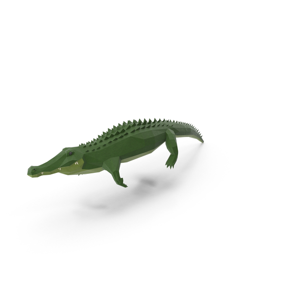 Low Poly Alligator PNG Images & PSDs for Download.