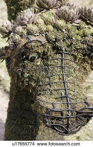 Stock Photo of moss, sculpture, peat, form, metal, alligator.