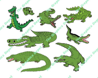 Alligator clipart.
