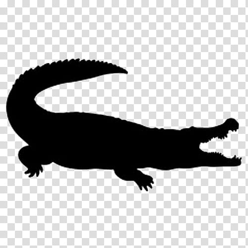 Alligator, Alligators, Crocodile, Silhouette, Black Caiman.