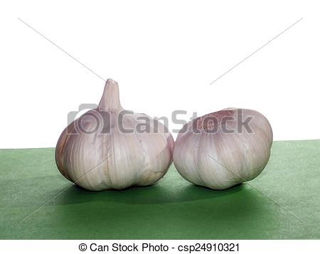 Stock Photo of Garlic (Allium sativum) is an important f?zser.