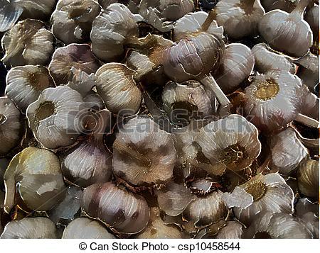 Drawing of 3D Garlic.