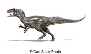 Allosauridae Illustrations and Stock Art. 18 Allosauridae.