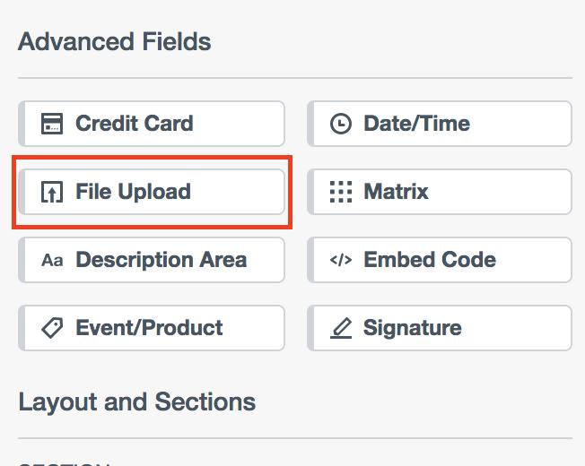 File Upload Fields.