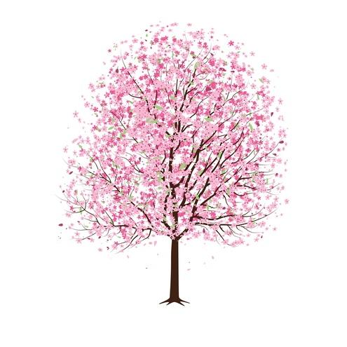 Almond Tree Clipart.