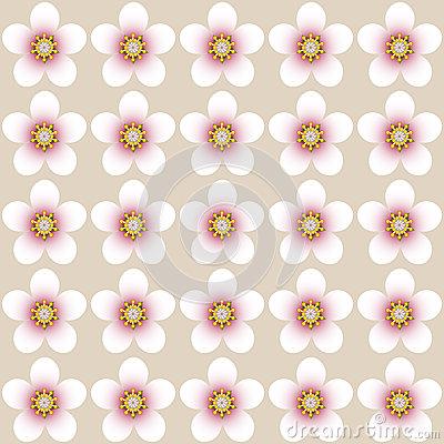 Almond Blossom Pattern Stock Vector.