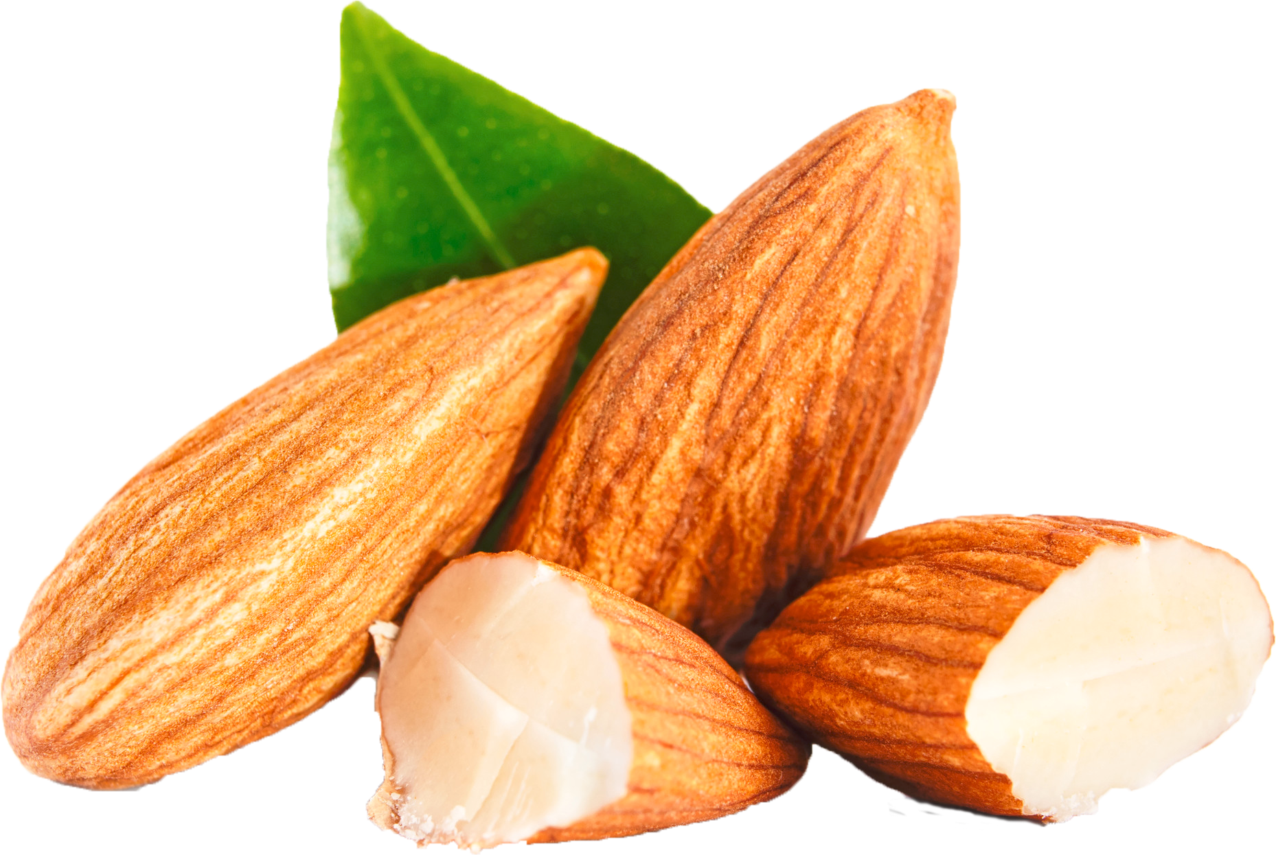 Download Almond PNG Clipart.