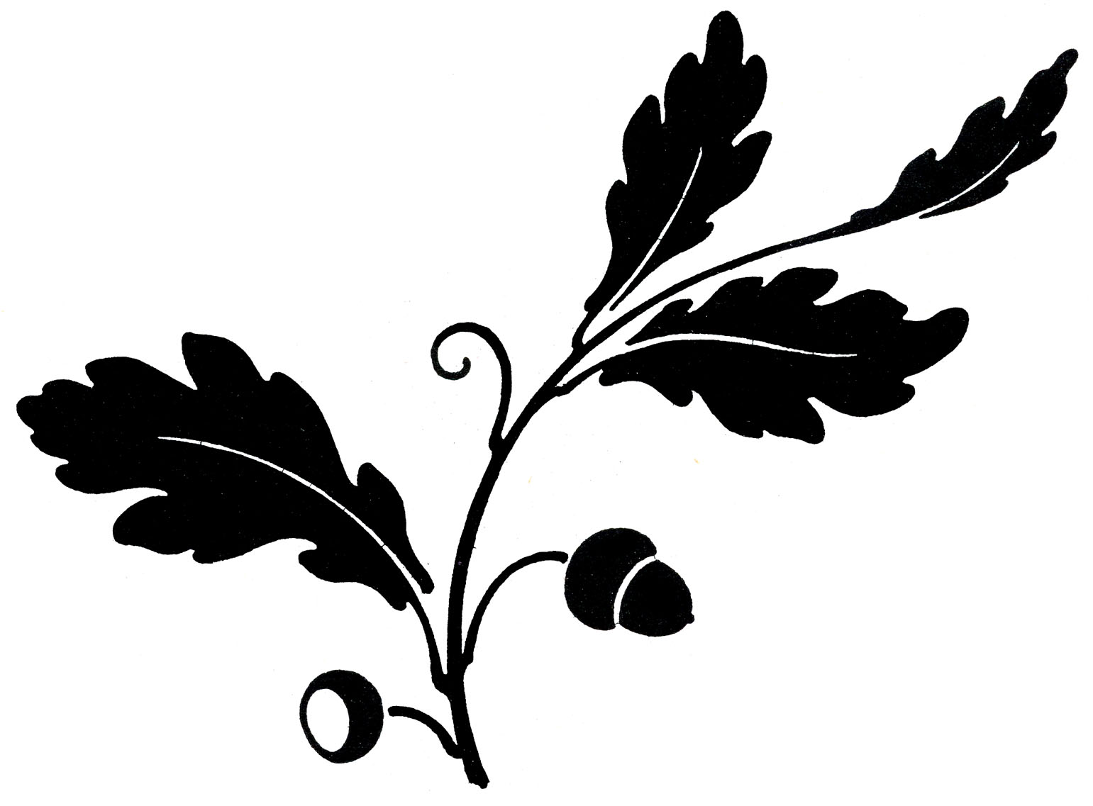 Leaf clipart silhouette.