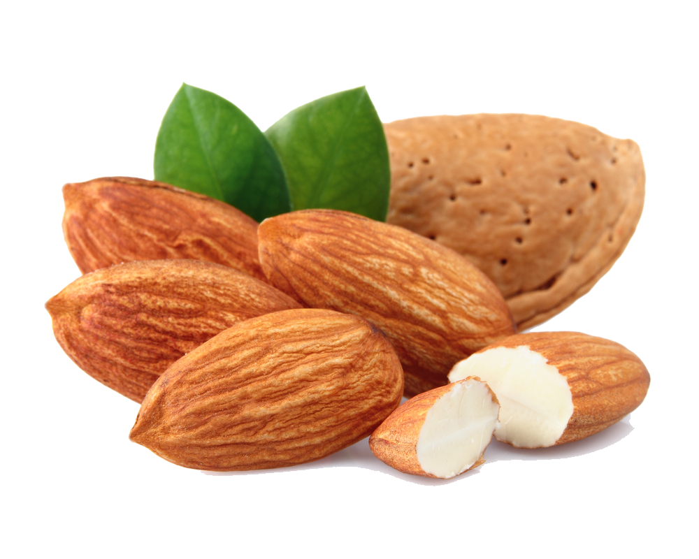 Almond PNG Transparent Images.