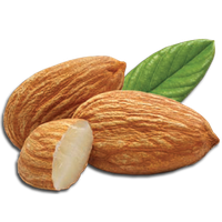 Download Almond Free PNG photo images and clipart.