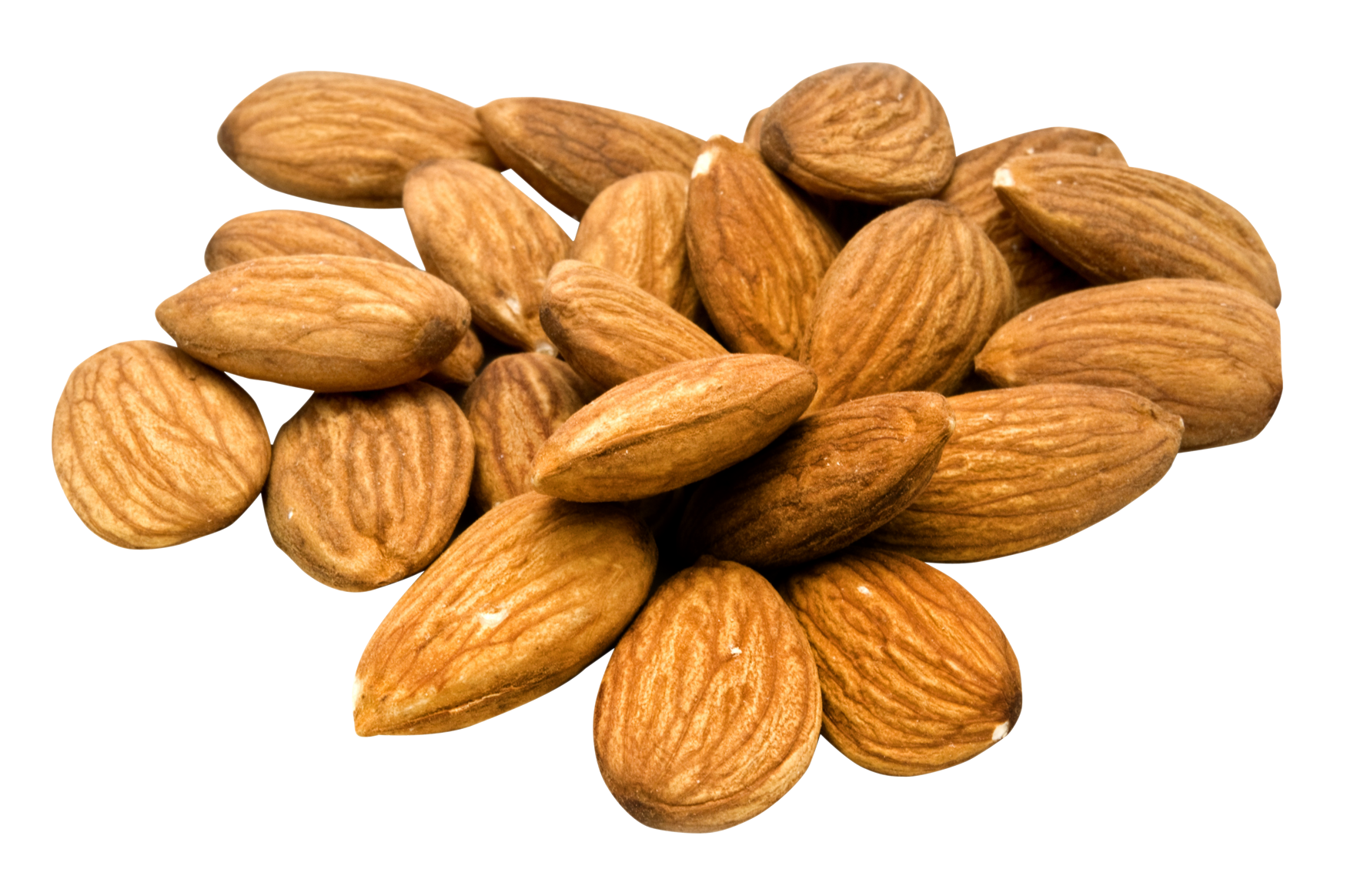 Almond PNG Image.