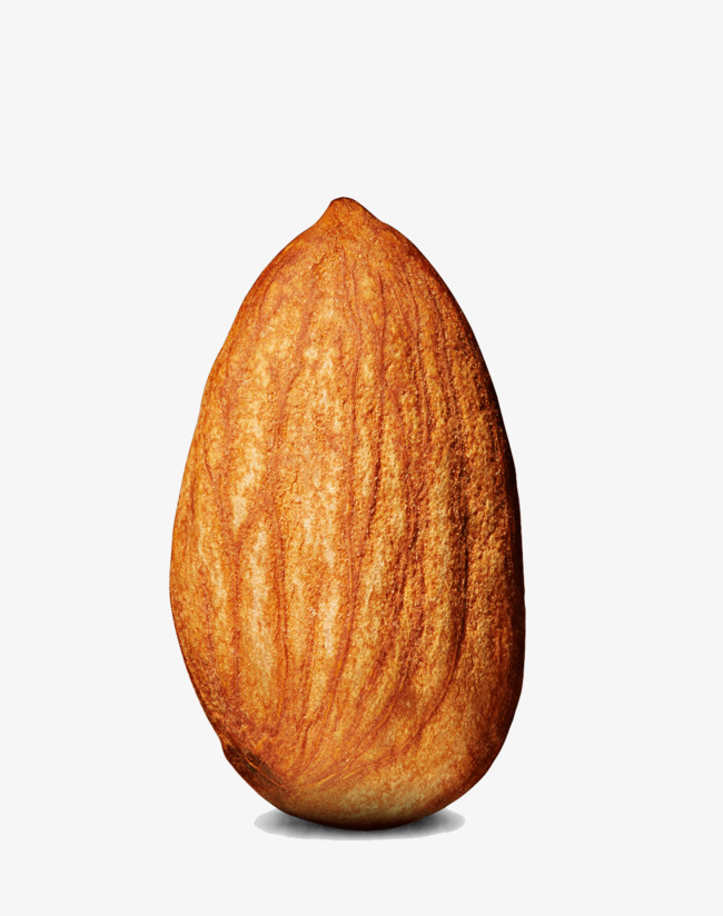 An Almond, Nut, Almond, Food PNG Image and Clipart for Free Download.