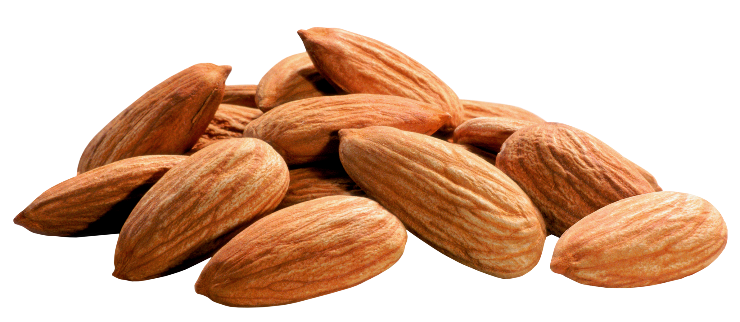 Download Almond PNG Image.
