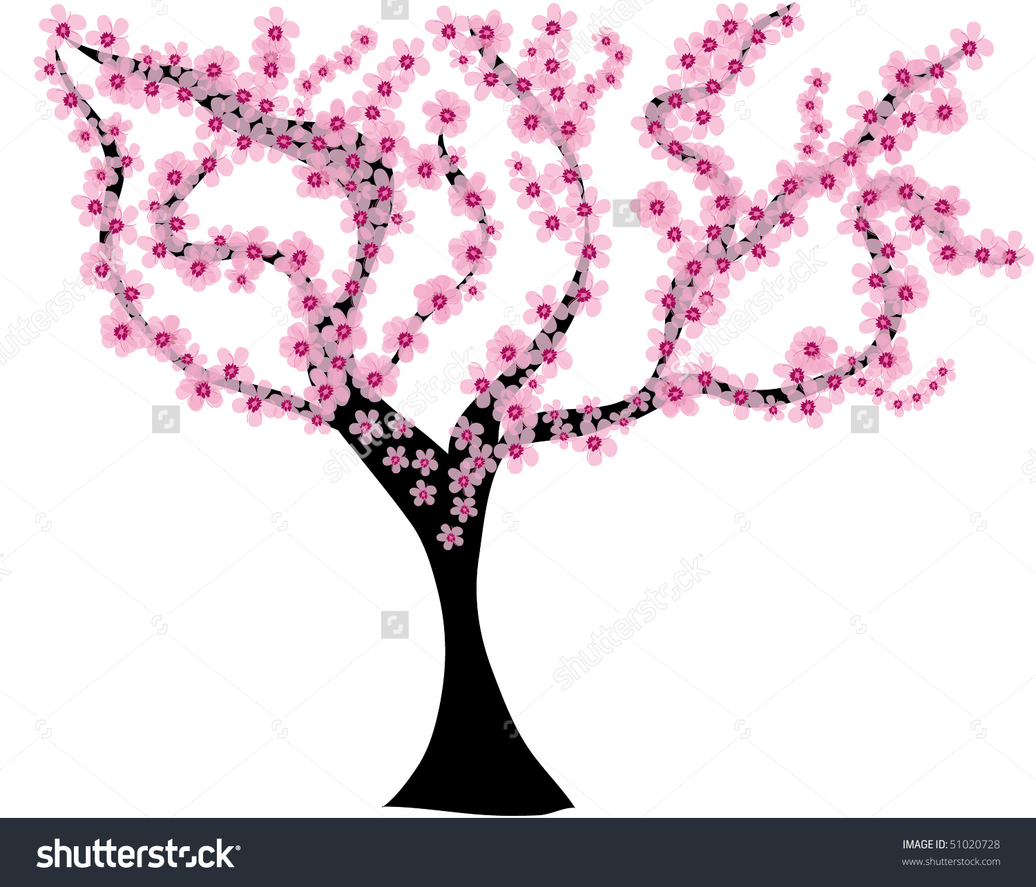 Almond Tree Stock Vector 51020728.