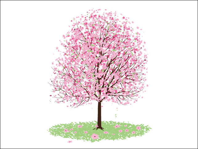 Almond tree clipart