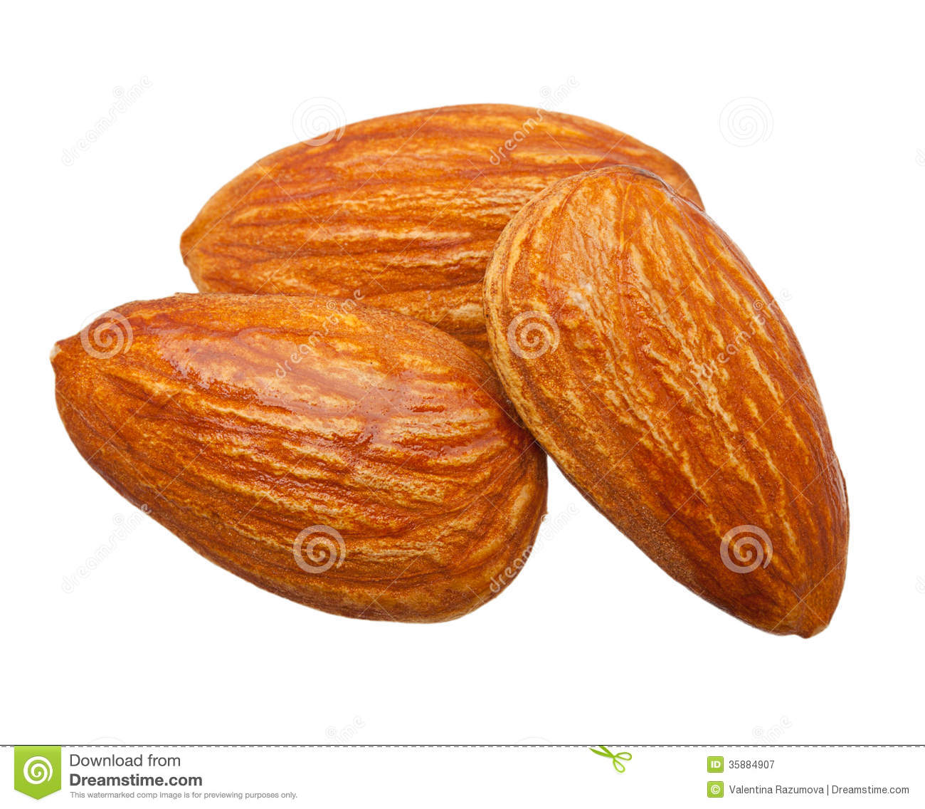 Almond clipart free.