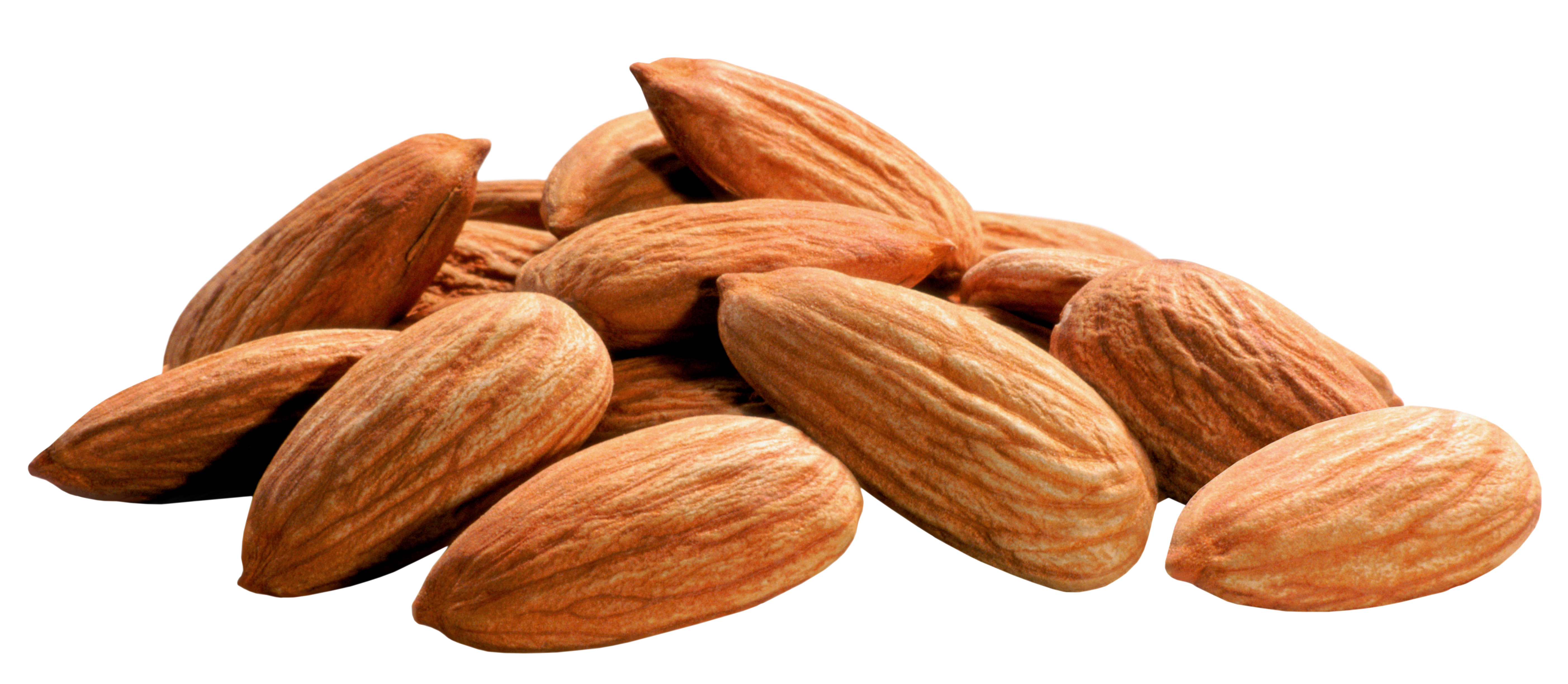 Almonds PNG Image.