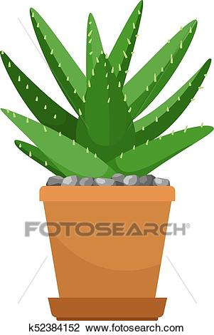 Aloe vera in flower pot Clipart.