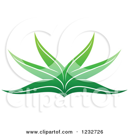 Clipart of a Mature Aloe Vera Plant.