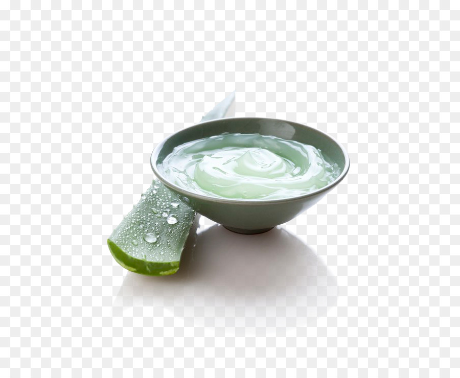 Aloe Vera png download.