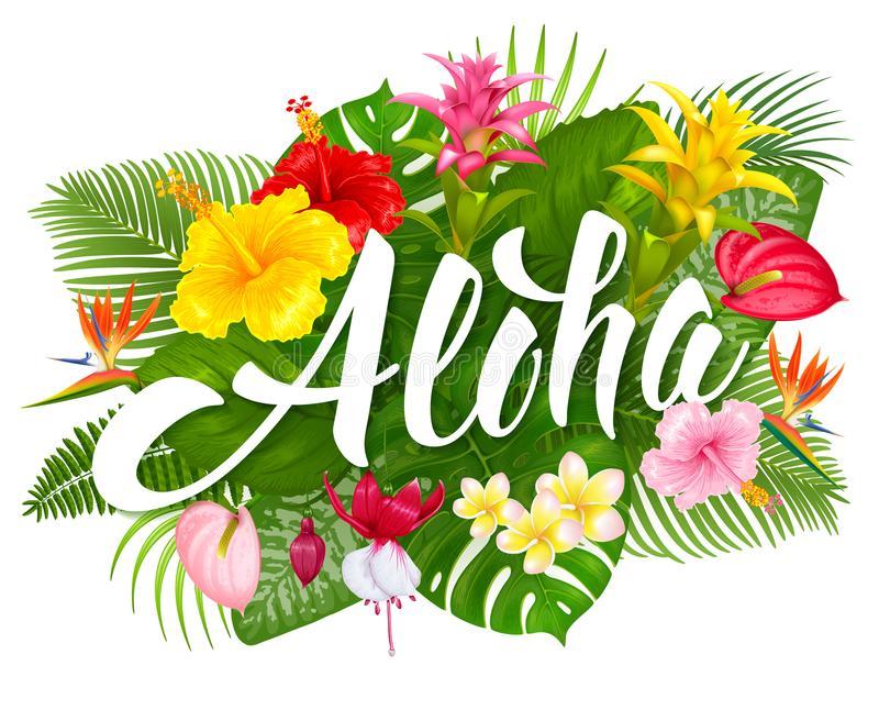 Aloha Stock Illustrations.