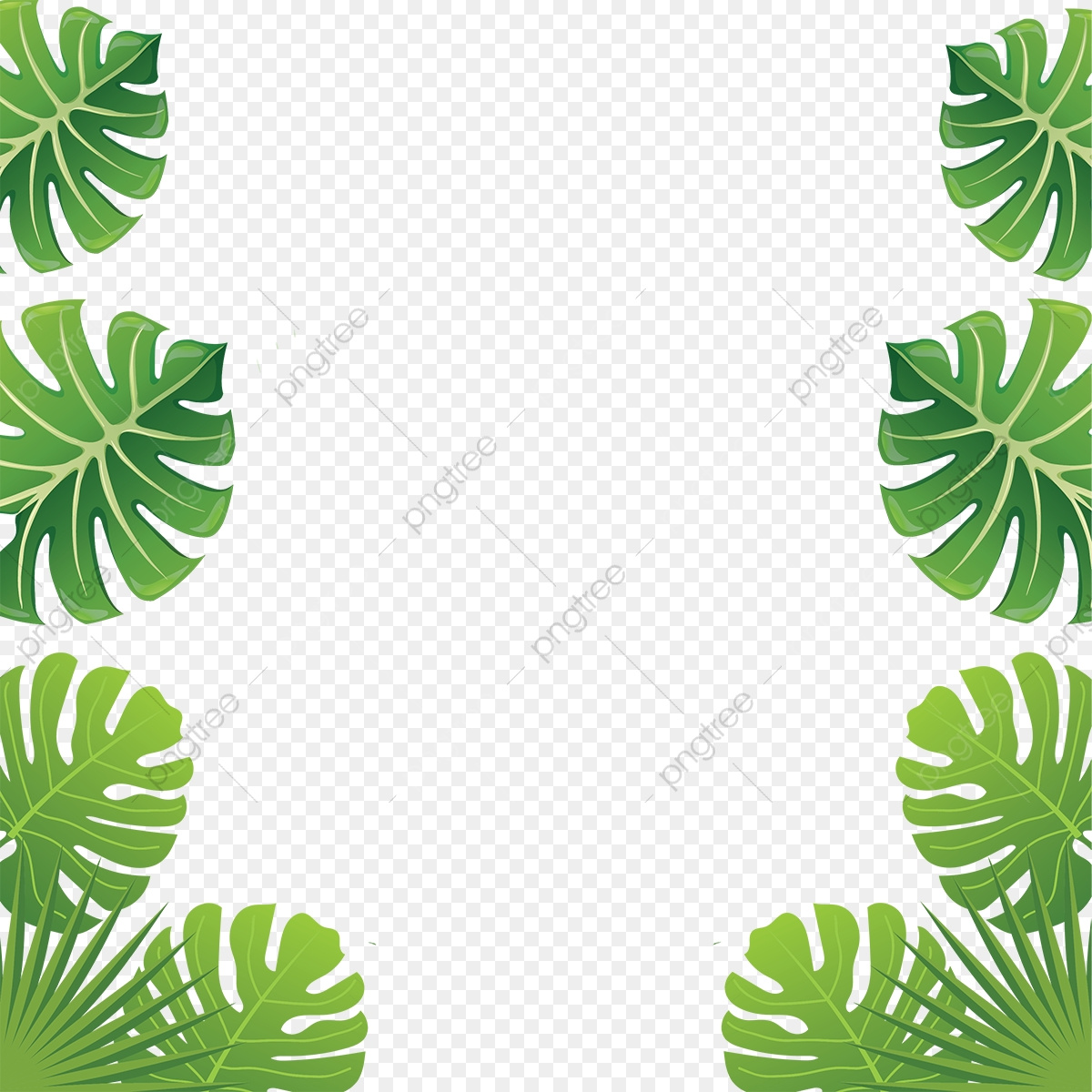 Aloha Tropical Flowers, Aloha Flowers, Tropical Leaves, Leaves Frame.